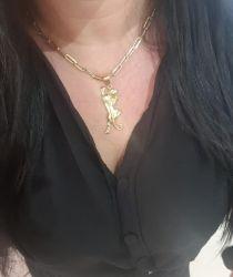 Kit  Feminino Cordão Tijolinho Cartier 6mm + Pingente Pantera Banhado a Ouro 18k